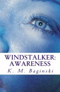 Windstalker_Cover_for_Kindle